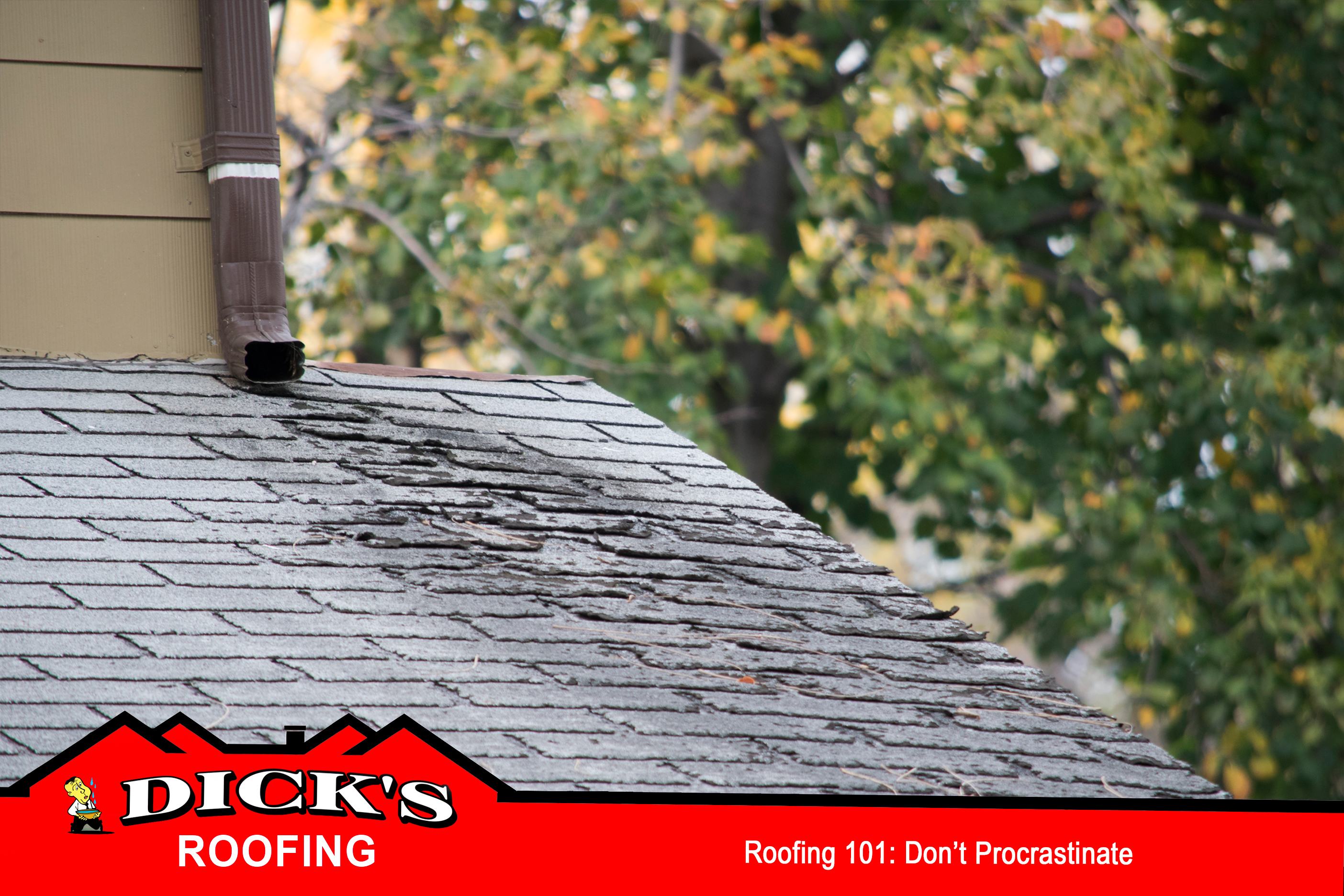Roofing 101 | Dick's Roofing