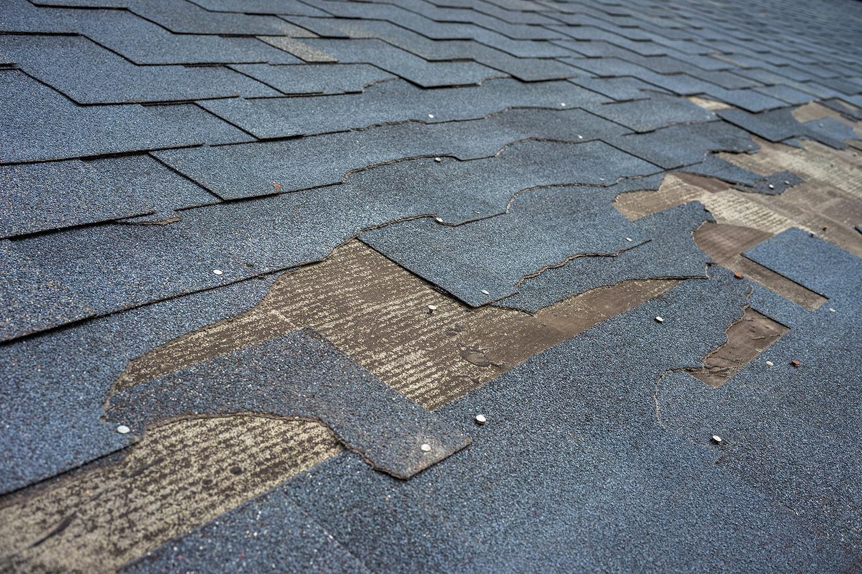Roof Damage | Dicks Roof Repair