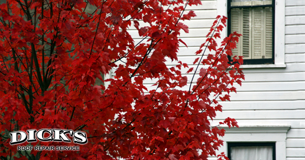 Fall is Perfect Time to Update Your Siding